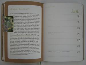 Stadtgarten-Diary -1