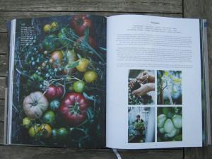 Buch - Barbara Bonisolli - Barbara kocht - Tomaten