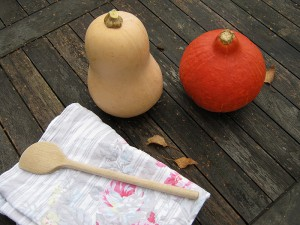 Kürbisse  - Kürbissuppe - Herbst