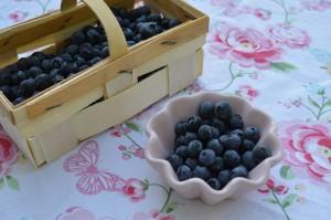 Blaubeeren im Garten pflanzen, im Wald sammeln oder kaufen