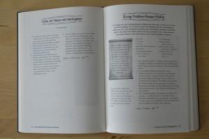 Harry Potter Kochbuch - Rezept Riesige Heidelbeer-Knusper-Muffins